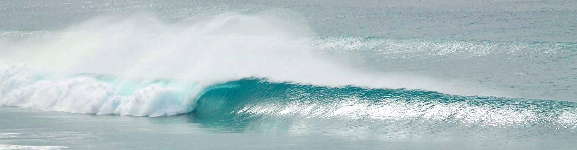 surf spots en Fuerteventura